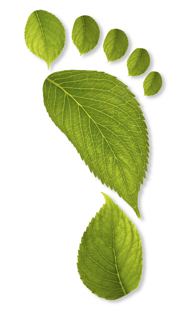 PolyCom carbon footprint